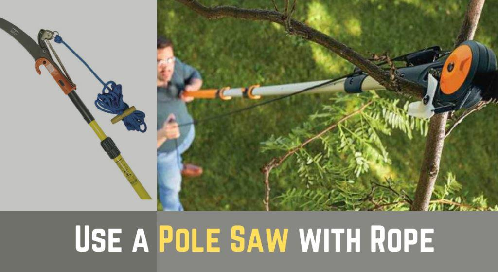 How to Use a Pole Saw with Rope? – Best Tree Branch Cutter